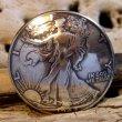 画像1: 50セント ウォーキングリバティー コイン コンチョ (1)